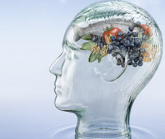 Food, The Brain And Us: Exploring Our Historical, Cultural And Sensory Perceptions Of Food