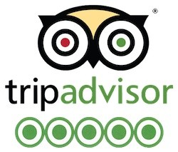 Trip Advisor Logo 5 Star
